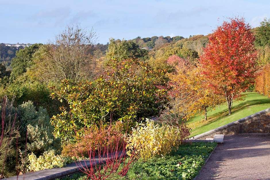 Smytham holiday park for Local landscape gardeners