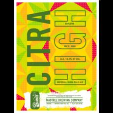 CITRA HIGH poster